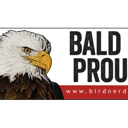 Bald and Proud Bald Eagle 3x8 bumper sticker 750x505px